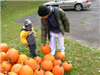 Family picks out pumpkin